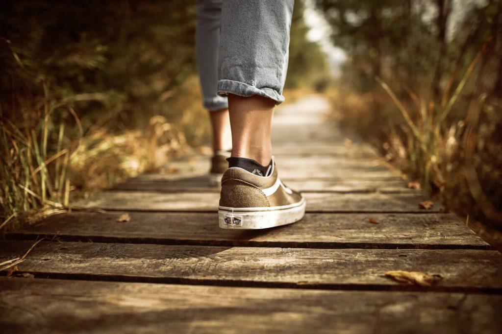 צעד קדימה מתנועת החיים