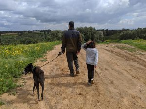 טיול בשדות עם הכלב