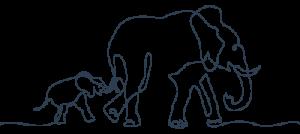 אמא וגור פילים